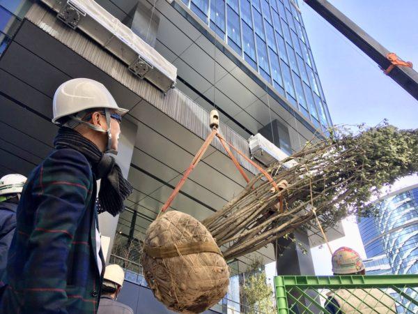 渋谷南平台プロジェクト